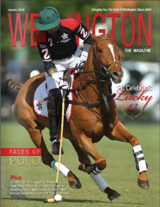 Wellington the Magazine
